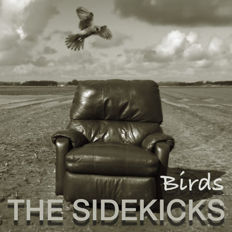 CD cover Birds - The Sidekicks